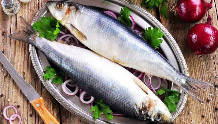 Aringa, caratteristiche e ricette