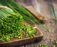 Erba cipollina, caratteristiche e ricette