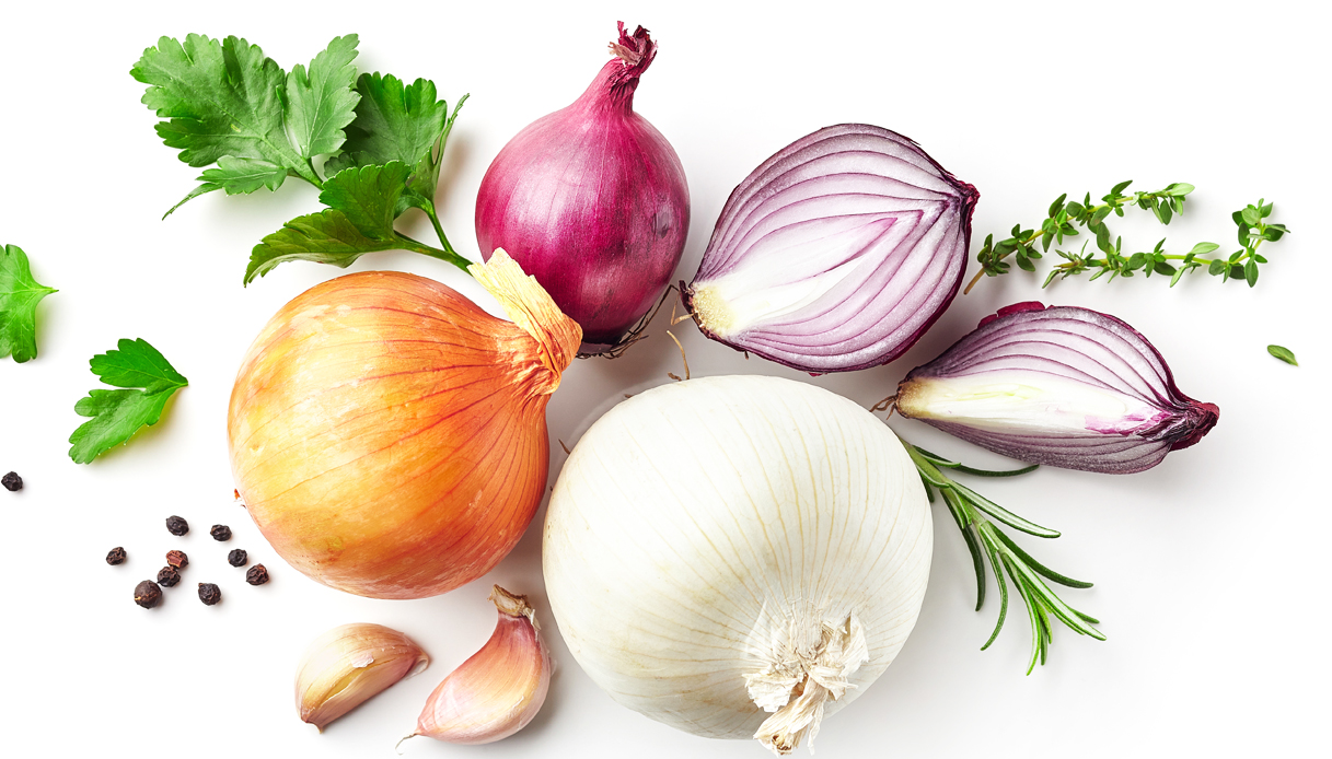 Cipolla, caratteristiche e ricette - Buonissimo