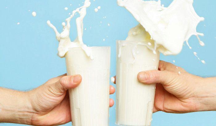 Latte, caratteristiche e ricette