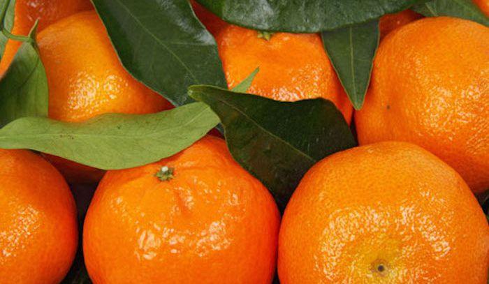 Mandarini, caratteristiche e ricette