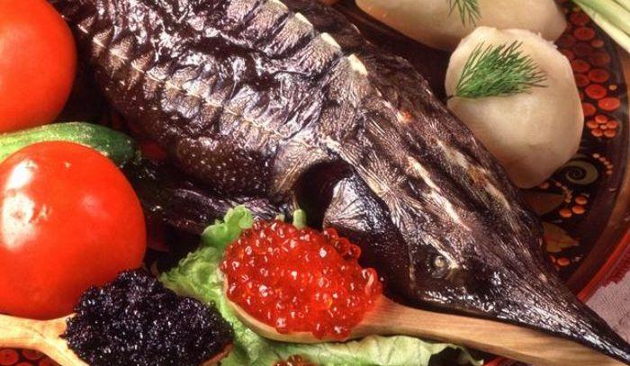 Storione, caratteristiche e ricette