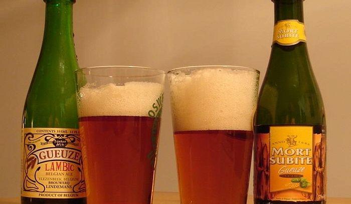Tipologie di birra - G