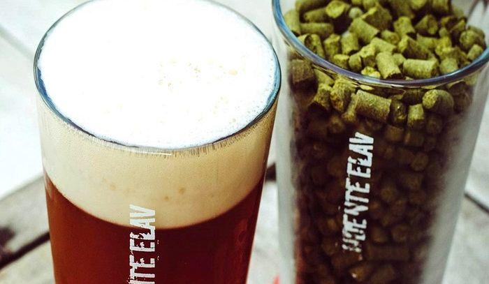 Tipologie di birra - V