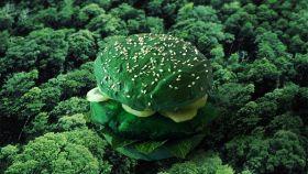 Hamburger: famolo strano