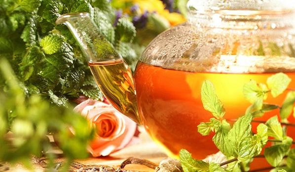 quale è meglio per bruciare il tè rosso o verde grasso