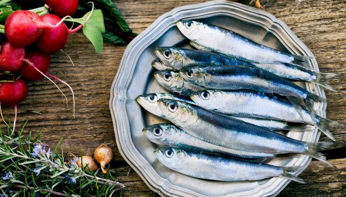 Pesce azzurro: le qualità perfette per la nostra salute