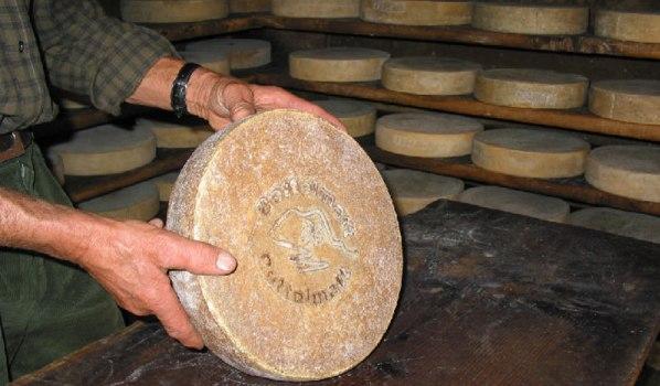 Bettelmatt, tutto sul formaggio tipico Walser