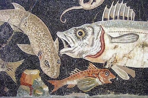 I prodotti ittici