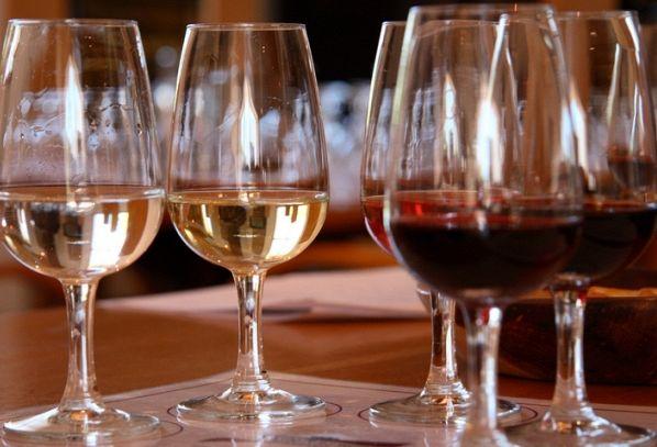 IL NASO DEL VINO: dal vitigno al bicchiere