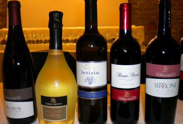 I vini DOC delle Marche