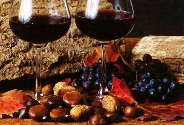 I vini DOC di Potenza in Basilicata