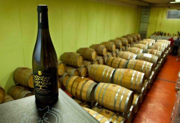 I vini DOC di Pesaro Urbino nelle Marche