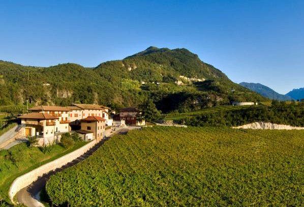 I vini DOC del Trentino Alto Adige