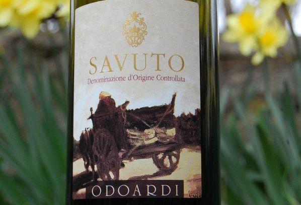 I vini DOC di Cosenza in Calabria