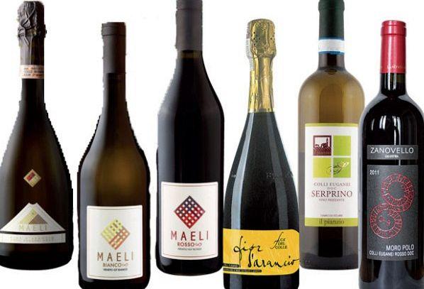 I vini DOC di Padova nel Veneto