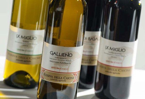 I vini DOC di Roma nel Lazio