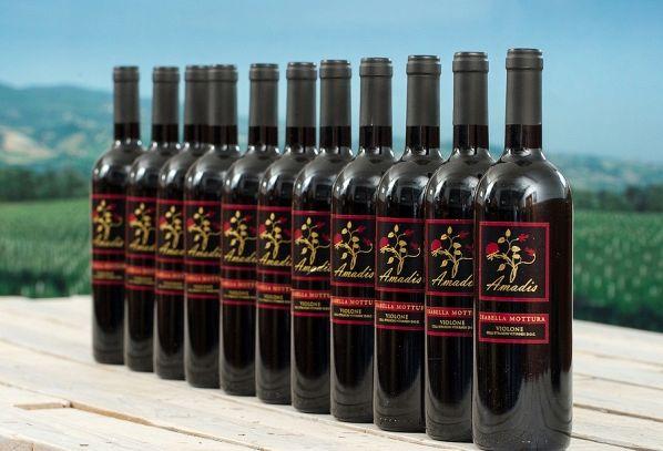 I vini DOC di Viterbo nel Lazio