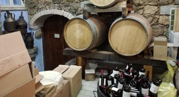 Vino, export dalle cantine della Romagna per 151 milioni di euro