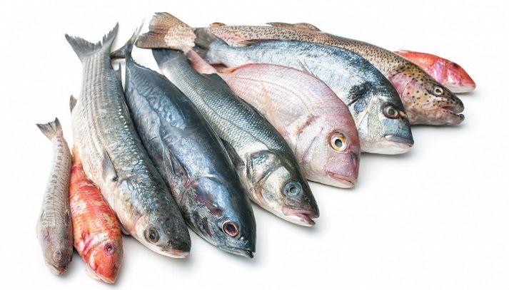 Il pesce: proprietà e benefici. I consigli della nutrizionista