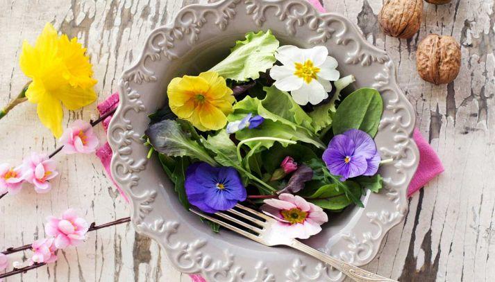 A Sanremo il primo contest di ricette coi fiori