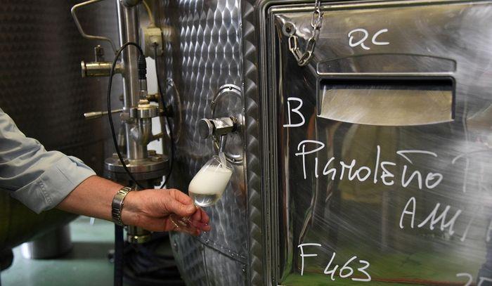 Vinitaly: 120 etichette consorzi Pignoletto e Colli Bolognesi