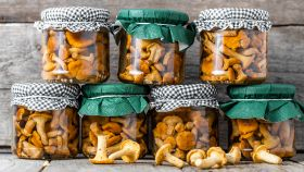 Funghi: la conservazione. Come farli sott'olio, secchi, congelati