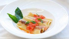 Cannelloni pomodoro e basilico