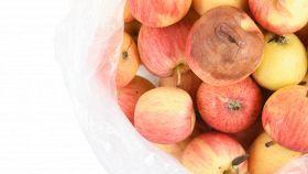 Come utilizzare le mele troppo mature