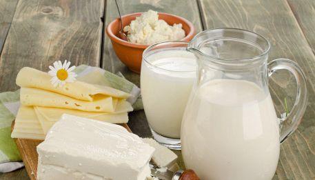 Le sane abitudini alimentari: i formaggi
