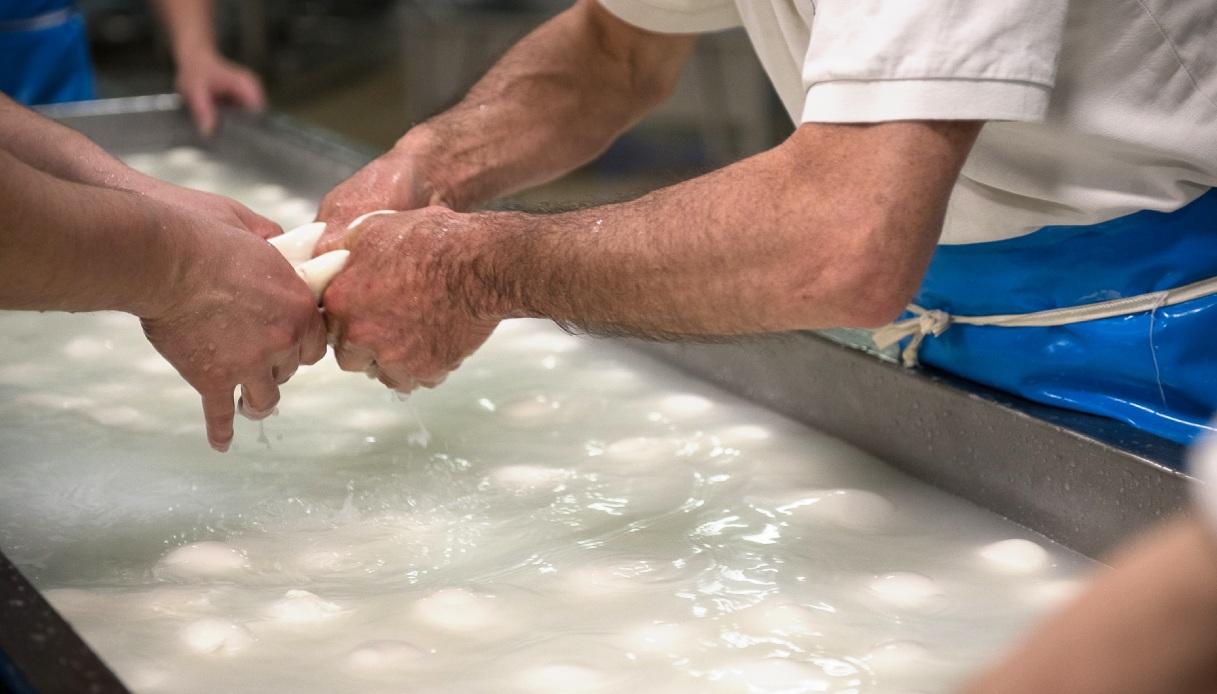 Mani che lavorano la mozzarella