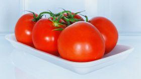 Pomodori conservati in frigorifero: cosa fare prima di cucinarli