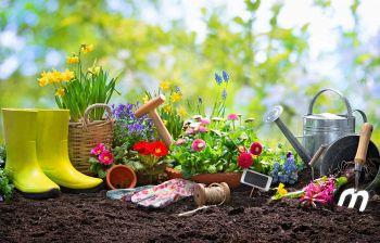 Come fare? Gli attrezzi necessari per la cura del tuo giardino