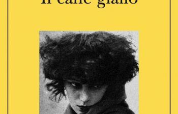 Classici da rileggere: Maigret e il cane giallo