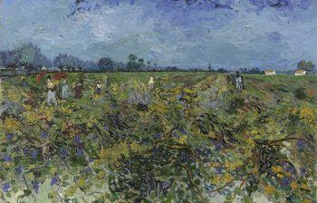 Stasera l'allestimento in diretta per la mostra di Van Gogh a Padova
