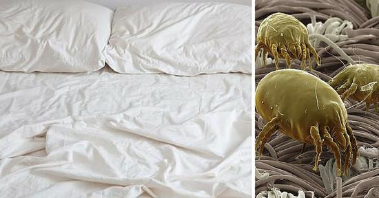 Ogni quanti giorni è necessario cambiare le lenzuola del letto?