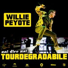 Willie Peyote - Sherwood Festival