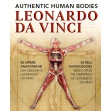 Leonardo Da Vinci Authentic Human Bodies