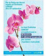 L'Orchidea UNICEF torna nelle piazze italiane