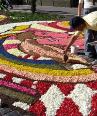 Genzano si copre di fiori con la storica Infiorata