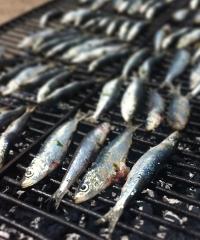 La sagra della sardina, una festa per i buongustai