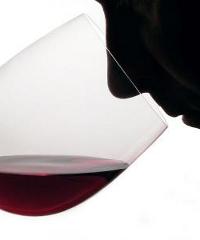 """""""Dalla vigna alla bottiglia"""", un corso di wine tasting a Milano"""