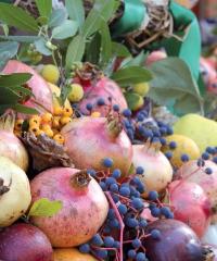 Festa dei frutti dimenticati e del marrone di Casola Valsenio 2019