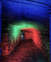 'Orticolario: The Origin', tour virtuale gratis a Villa Erba