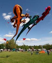 Vulandra, torna il Festival Internazionale degli Aquiloni