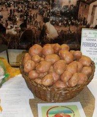 Bodi Fest, a Monterosso Grana si celebra la patata