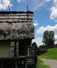 Terramara online: alla scoperta Parco Archeologico di Montale