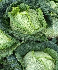 Mercato contadino di via Repubblica: prodotti bio e a km 0
