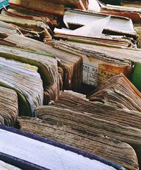 Librerie a Trento in Piazza Mostra