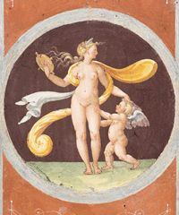 """Incontro streaming sull'arte: """"Venere. Natura, ombra e bellezza"""""""